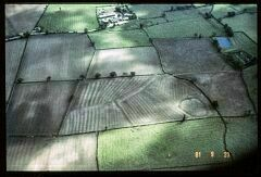 Iron Age enclosure NW of Newhall  © LCC